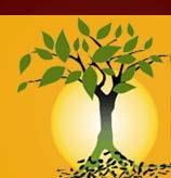 Logo of Biochar International